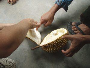 Se hetki tuli ikuistettua, kun menetin sydämeni durianille balilaisella temppelillä.