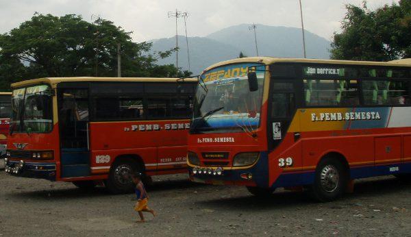 Indonesialaiset bussit Bukit Lawangissa.
