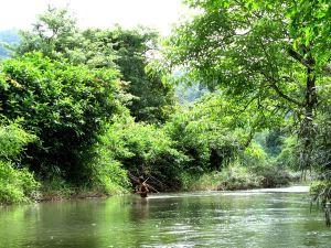 Joku ylitti jokea.