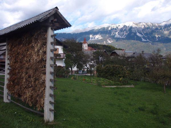 Heinänkuivausta Bledin ympäristöstä.