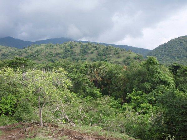 Komodon maisemaa.