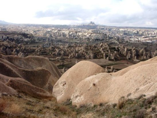 Piikikästä ja karua maisemaa Kappadokiassa pyöreämpien kivien takana.