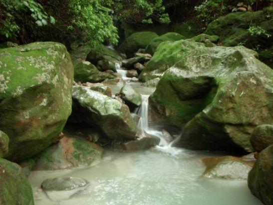 Nätti luonnonmuodostelma polun varrelta.