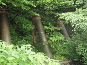 Näin metsässä isoja putkia, joiden arvelen tuovan kuumaa vettä kukkuloiden lähteiltä kylpylöihin.