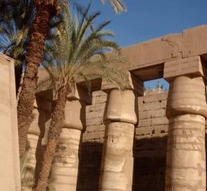 Palmuja ja pilareita Karnakin temppelialueella.