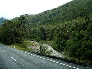 Ylitimme eteläsaaren vuorijonon Haas Passia pitkin länsirannikolle. Maisemat olivat rehevät ja vesi virtasi.