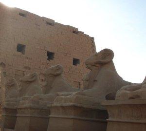 Sfinksejä Karnakin temppelillä.
