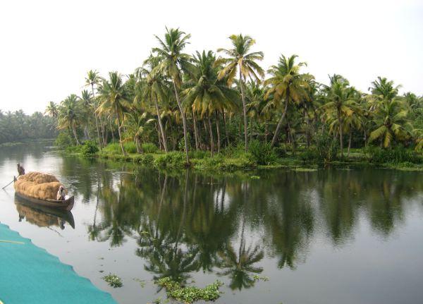 vene ja palmuheijastus