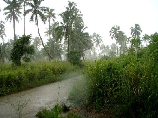 Trooppinen sadekuuro iski pyöräilymatkallamme.