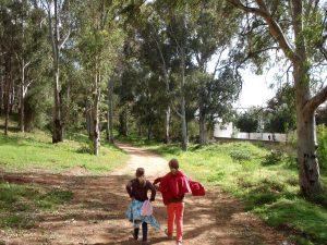 Eukalyptusmetsää matkalla La Marsasta Sidi Bou Saidiin. Oikealla lähijuna-asema Sidi Dhrif.