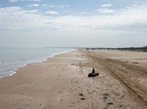 Gammarthin rantaa.