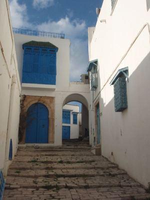 rappukuja Sidi Bou Saidissa