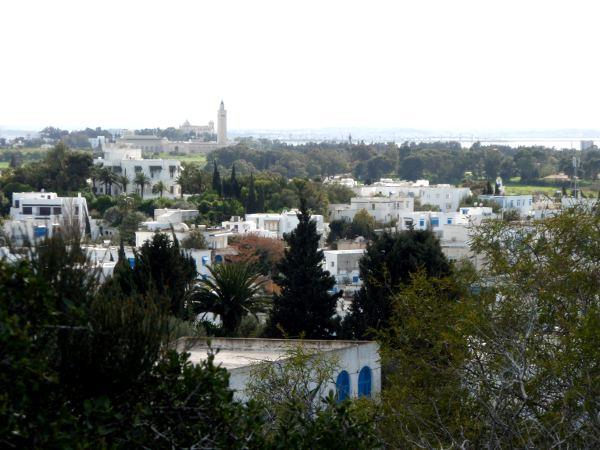 Näkymää Sidi Bou Saidiin keskustassa olevasta kaktuspuistosta.