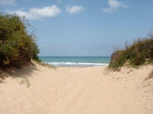 Meren ranta oli ehkä 200 metrin päässä hotellista.