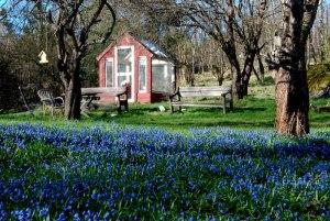 Jyriksen puutarhasta löytyi kivasti kuvakin Facebook-tapahtumasivulle.