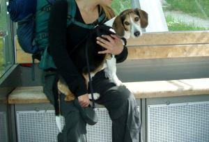 Laiskimukset matkustimme parkkipaikalta ylös Ukko-Kolille funikulaarilla.