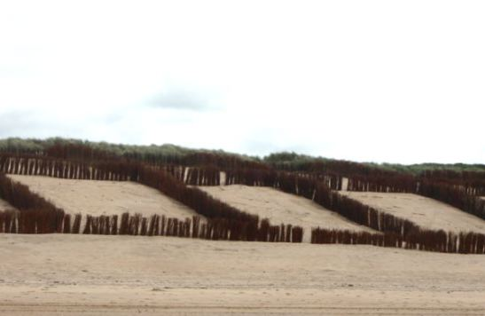 De Haanissa rantaa oli jaettu ihmeellisesti karsinoihin. Auttaa varmaan pitämään dyynejä paikoillaan, mutta kai joku muukin merkitys.