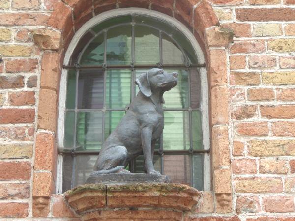 Belgiassa oli paljon koiria ja minä olin koirankaipuisena pakahtua.
