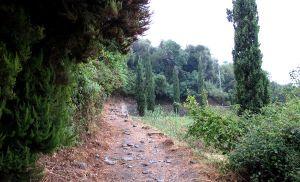 Aivan alkumatkan polkua ylhäällä Levantossa.
