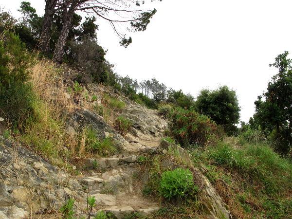 Polkua ylhäällä kallioilla ehkä tunnin matkan päässä Levantosta.