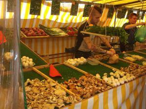 Sieniä Marche Bastillessa.