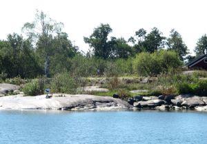 Aivan uskomatonta, että tällaiselle luonnonkaunille rantakalliolle pitää täräyttää koirakieltomerkki.