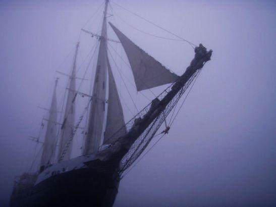 Estelle merellä. Kuva: Estelle / Uusi Tuuli ry