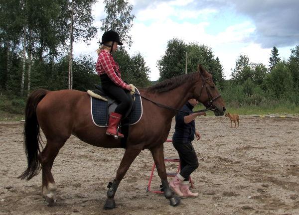 Kävin elämäni ensimmäisellä ratsastustunnilla. Jo toisella tunnilla putosin laukkaavan hepan selästä.
