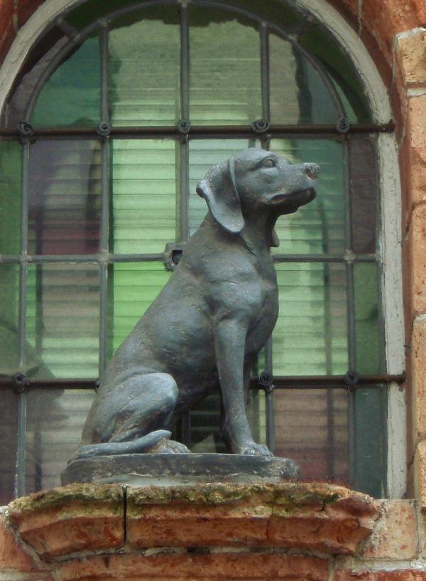 Koirapatsas Belgian Bruggessä. Belgiassakin pystyi aistimaan rennomman suhtautumisen koiriin.