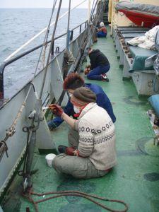 Sain Estellellä käsityksen, että sellaisilla laivoilla riittää koko ajan kunnostamista. Tässä poistetaan ruostetta ja pintoja pitää kai koko aja maalata, jotta ruoste pysyisi poissa. Kuva: Estelle / Uusi Tuuli ry