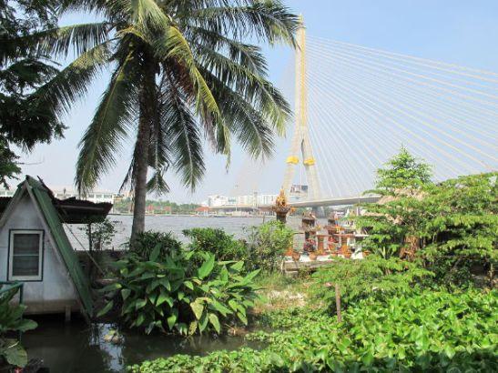 Uusi ja halvempi majapaikkani Banglamphussa sijaitsee Chao Phraya -joen rannalla. Pihalla on vettä ja vesikasveja.