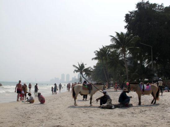 Hua Hinin rannalla oli talutettua ratsastusta tarjolla.