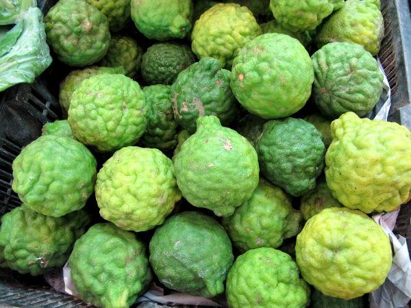 Kaffirlimettejä. Suomalaisille nämä ruttuiset limetit ovat tutuimpia niiden lehtien takia, koska ne ovat yksi thairuokien pääyrteistä.