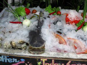 Inhoan Thaimaan rantapaikoissa iltaisin ravintolojen virittelemiä kala- ja grillaustiskejä. Minun on vaikea uskoa että kaikki se esille laitettu kala- ja äyriäismäärä tulee kenenkään ostettua ja niin paljon on turhaan merestä poistettu eläviä.