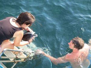Hyvä tyyppi vapauttaa mereen kilpikonnia. Hyvä tyyppi ei osta kalaa, jonka takia verkkoon on voinut tarttua kilppareitakin ja mitä vain muutakin.