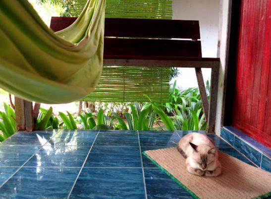 Bungalowin terassi Time for Limessa. Kissoja sai ottaa viereen yöksi.