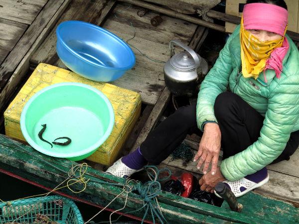 Ei ihme, että rouva pitää naamansa edessä liinaa. Hän myy saavissa kahta merihevosta Vietnamin Halong Baylla. Vähempikin luulisi hävettävän.