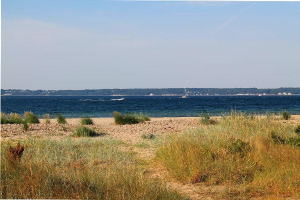 Leirintäalueen ranta.