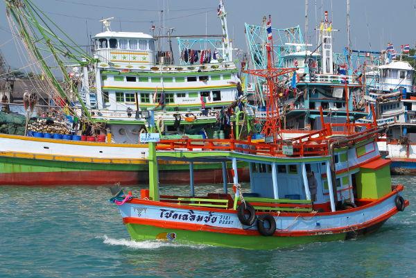 Värikkäitä kalastusveneitä satamassa.