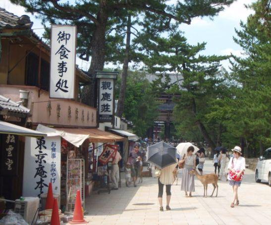 Matkalla temppelialueelle on turistikauppoja.