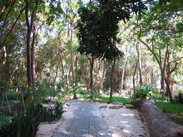 Bungalowien takaa löytyi lopulta metsäpolku seuraavalle rannalle.