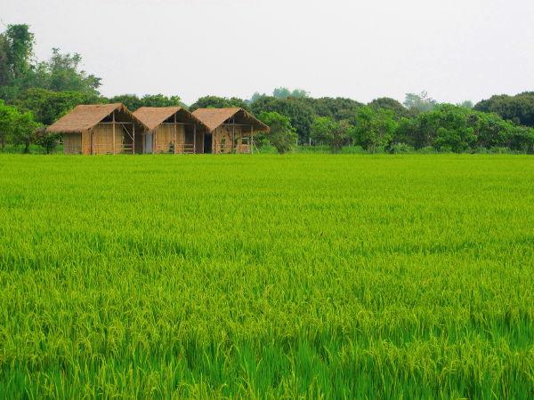 Lan Na tarkoittaa miljoonaa riisipeltoa.