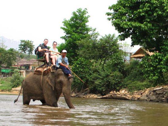 Vene pysähtyi norsuajelupaikassa, jossa muut kyytiläiset jäivät pois. Mutta tämä näky sai minut vain surulliseksi ja harmitti kun muut kyytiläiset menivät tuonne.
