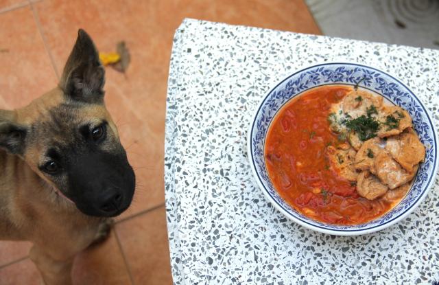 Jolie-pentua kiinnosti keitto ja soijapalatkin.
