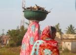 Naiset kantavat jotain sokeriruokojen juuria. Kai ne käyvät nuotioon.