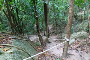 Joissain kohdissa metsäpolkua olisi laitettu köysiä könyämisen avuksi.