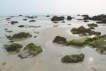 Kiviä Agondan rannan pohjoispäässä.