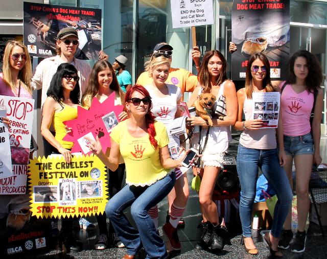 Kävimme Hollywood Boulevardilla mielenosoituksessa kiinalaista koiranlihafestivaalia vastaan. Meininki oli vähän erilaista kuin Suomessa tuon poseerauksen kanssa.