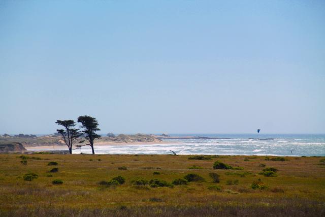 13 tuulinen ranta