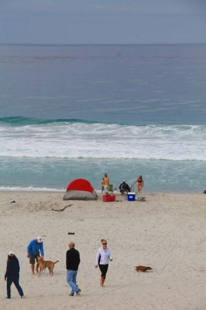 Carmelin koiraystävällisen kaupungin koiraystävällinen ranta.